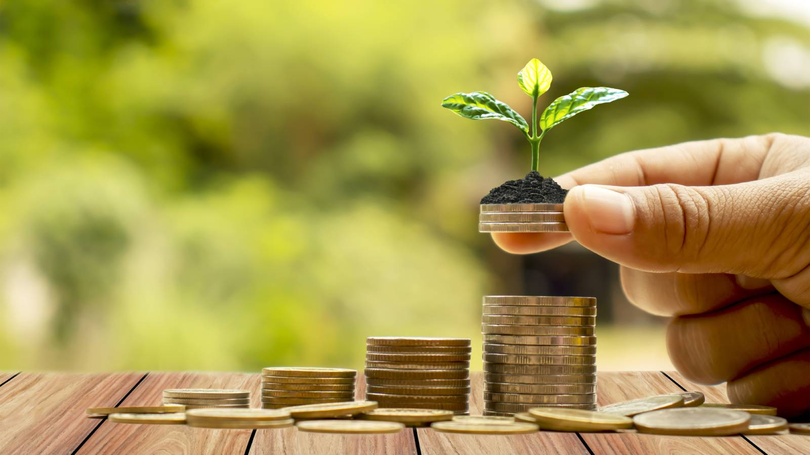 ESG Vs. SRI Investing: What's The Difference? | Bay Point Wealth