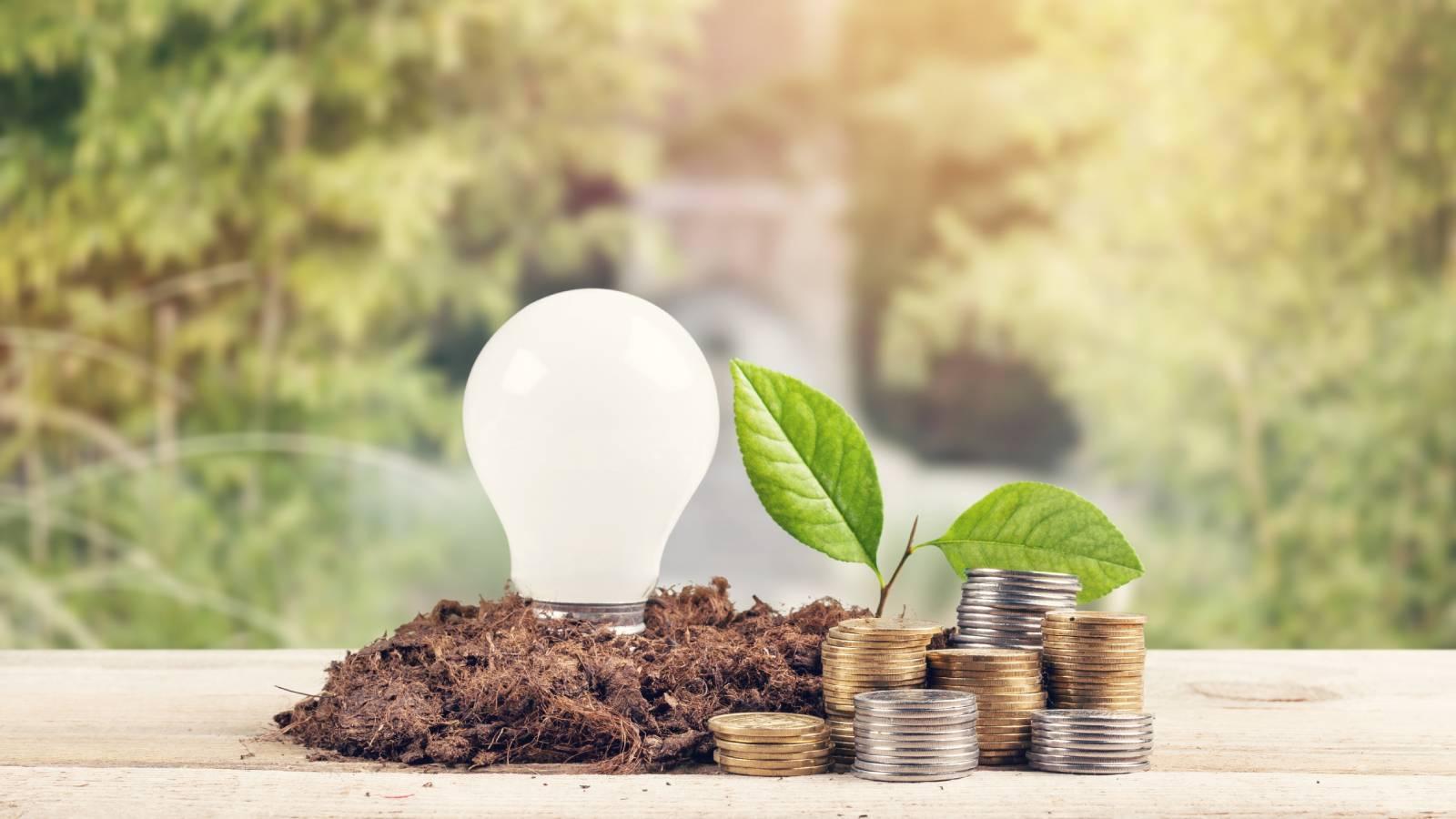 SRI, ESG & Impact Investing For Women: Understanding Your Options